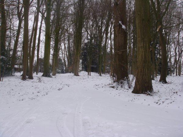 Ma maison, mon jardin sous la neige