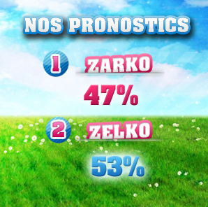 ESTIMATIONS -  SIXIÈMES NOMINATIONS : ZARKO / ZELKO