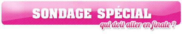 SONDAGE -  QUI DOIT ALLER EN FINALE ? 4 CHOIX POSSIBLE