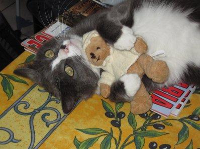 "Mon petit chat ""Grisou"" :)"