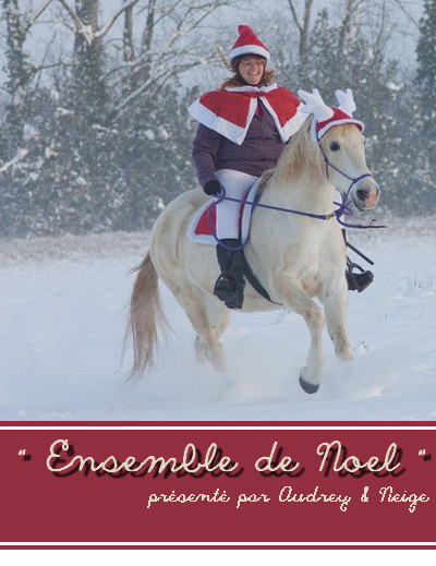© Article 04 de HorseDressing : Ensemble de Noel