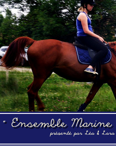 © Article 05 de HorseDressing : Ensemble Bleu Marine
