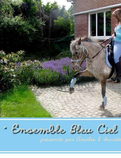 © Article 12 de HorseDressing : Ensemble Bleu Ciel