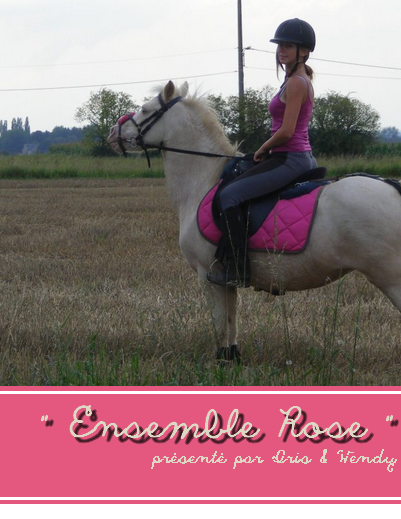 © Article 08 HorseDressing : Ensemble Rose