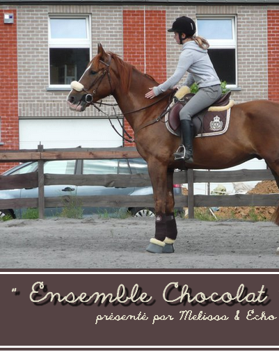 © Article 09 de HorseDressing : Ensemble Chocolat