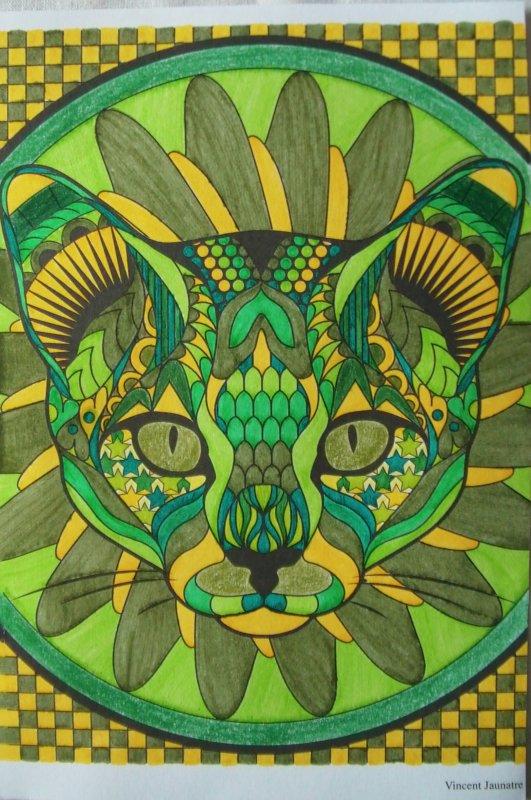 Chat thérapie : le chat vert