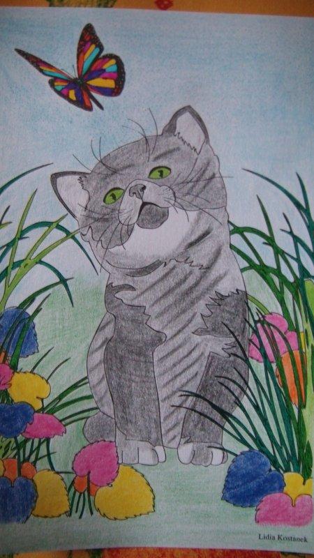 Chat thérapie : Tigrou et le papillon