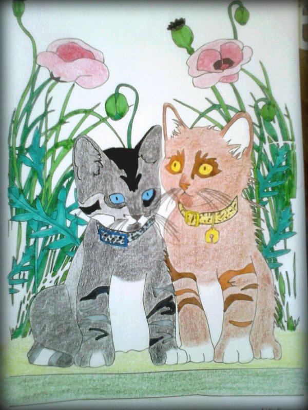 Chat thérapie : Luna et Pascalyne