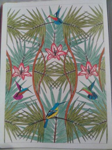 Aux sources du bien être,  jardin zen  coloriages Nini