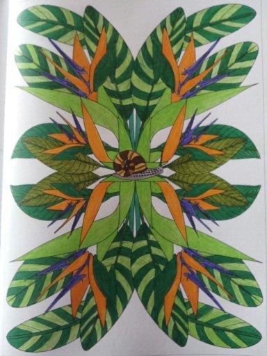 Au source du bien être,  jardins zen : les oiseaux de paradis. Coloriages Nini