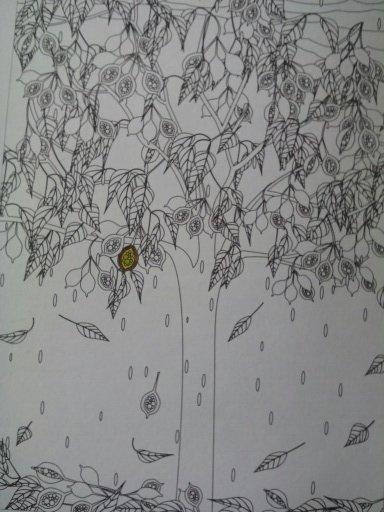 Au source du bien être,  jardins zen : les fruits de la passion. Coloriages Nini