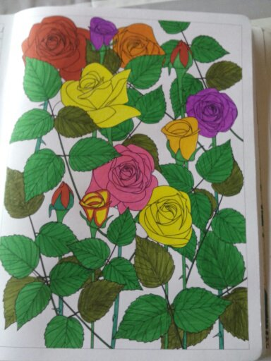 Au source du bien être,  jardins zen : les roses.  Coloriages Nini