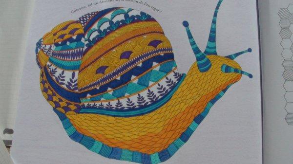 Animaux fantastiques : l'escargot