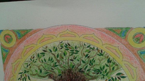 Mandalas : Pour rencontrer les fées coloriages Lucyle