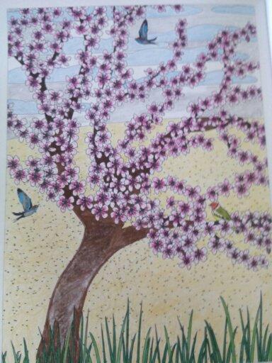 Au source du bien être,  jardins zen. Le cerisier du Japon.  Coloriages Nini