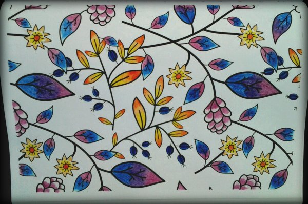 Art thérapie 100 nouveaux coloriages