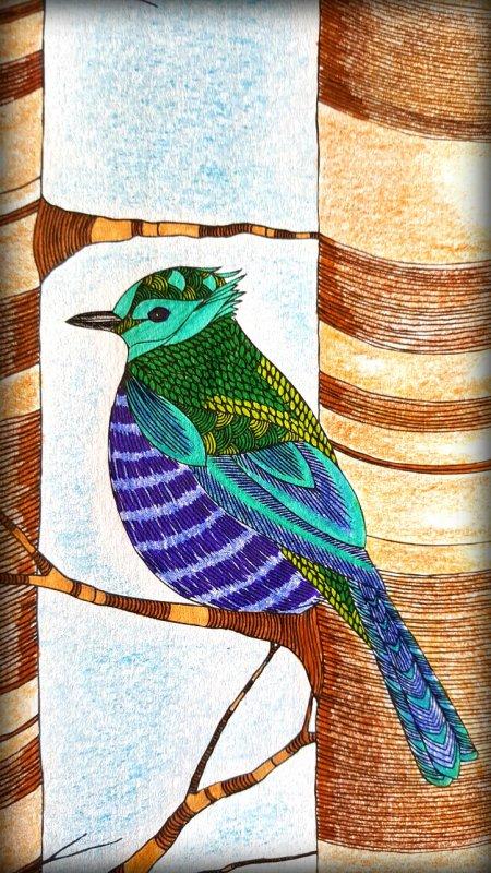 Art thérapie : Animaux fantastiques. Les oiseaux
