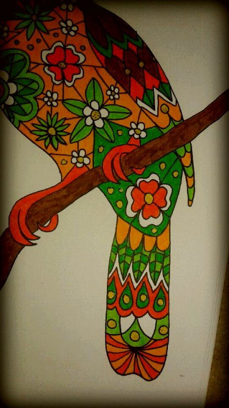 Art thérapie : animaux à colorier. Coloriage de Lucyle