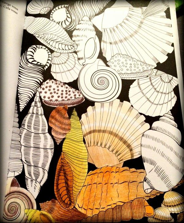 Art thérapie : été 100 coloriages anti stress. Coloriage de Lauryne