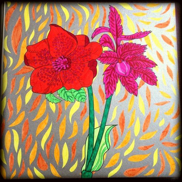 Art thérapie : fleurs exquises.  Coloriage Lauryne