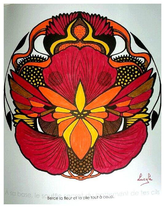 Mandala zentangle. Coloriage de Lucyle