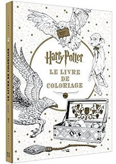 Art thérapie : Harry Potter.  Coloriage de Lauryne