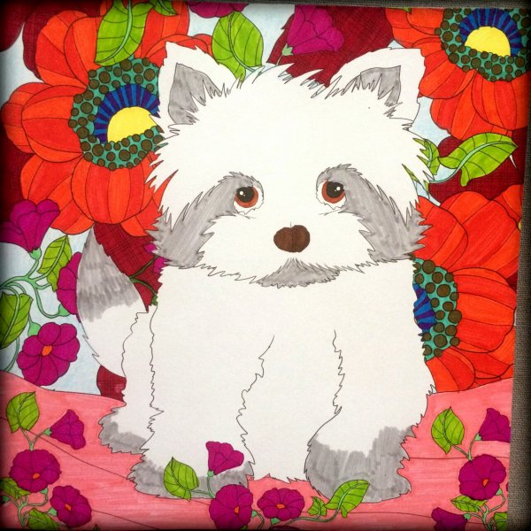 Art thérapie : puppies.  Coloriage Lauryne