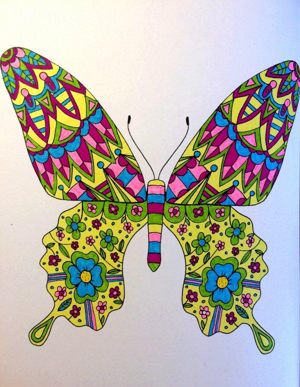 Animaux à colorier. Coloriage de Lauryne
