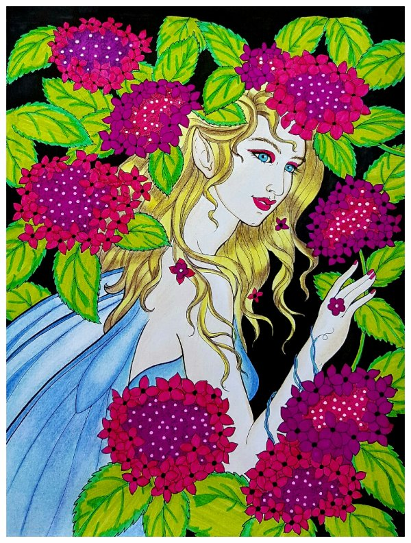 Fairies and friends de Barbara Lanza