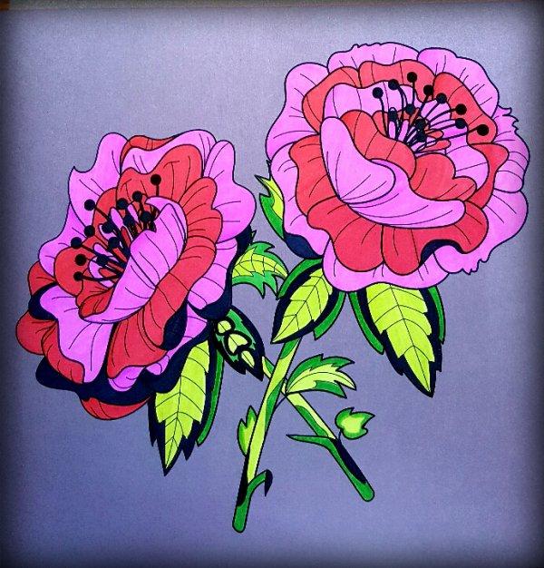 Fleurs exquises.  Coloriage de Ticia