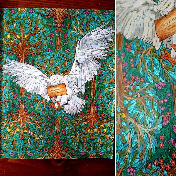 Harry Potter le livre de coloriage.  Coloriage de Lauryne