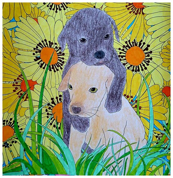 Puppies. Coloriage de Lauryne