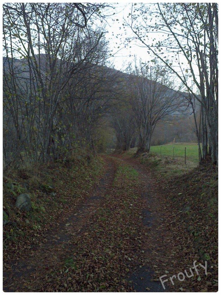 Promenade.