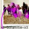 x3-bolamitie-x3