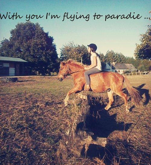 Mon poney, ma vie...♥