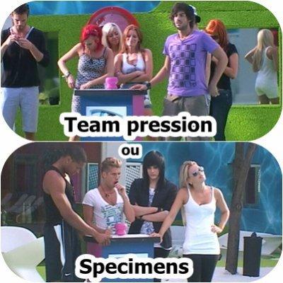 Specimens ou Team p