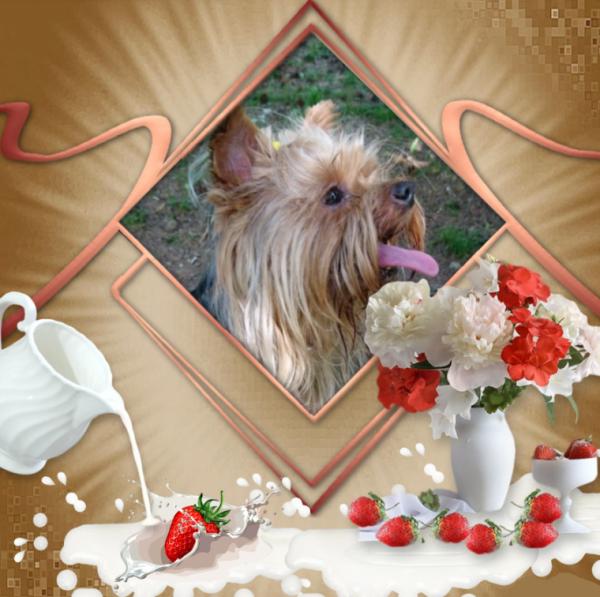 Merci Annie pour ton joli kdo en plus Maeva aore les fraises