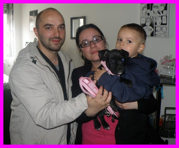 -- Les LouLous et leurs Nouvelles Familles ! --