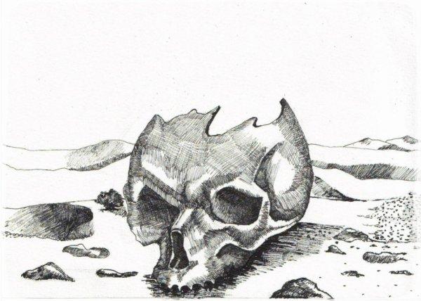 crâne dans le desert