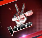 TheVoice-virtuelgame  fête ses 21 ans demain, pense à lui offrir un cadeau.Aujourd'hui à 15:06