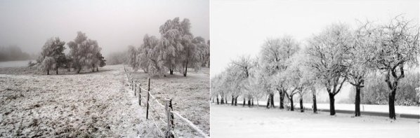 00477 - L'hiver à neige, c'est canon