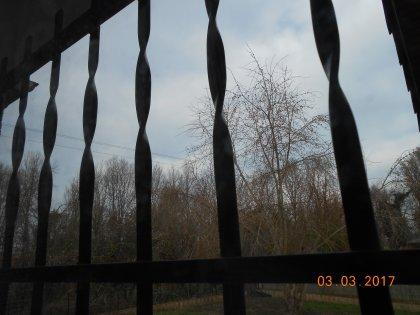 00690 - Je le regarde dans le bleu, ciel !