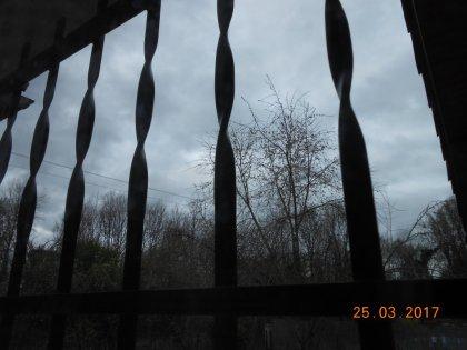 00831 - Bleu gris et gris bleu