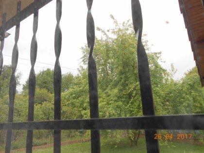 01033 - Clair mais humide