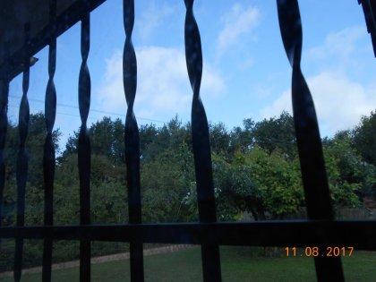 01516 - Gris, bleu, gris, bleu, on dirait une sonnerie d'urgence ! ! !
