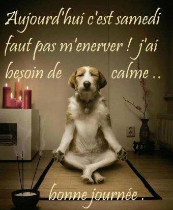 02066 - Zen soyons Zen