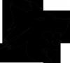 dracula-officiel