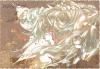 【Signature faite par moi de Yoruichi et de Soi Fon pour soifon61】