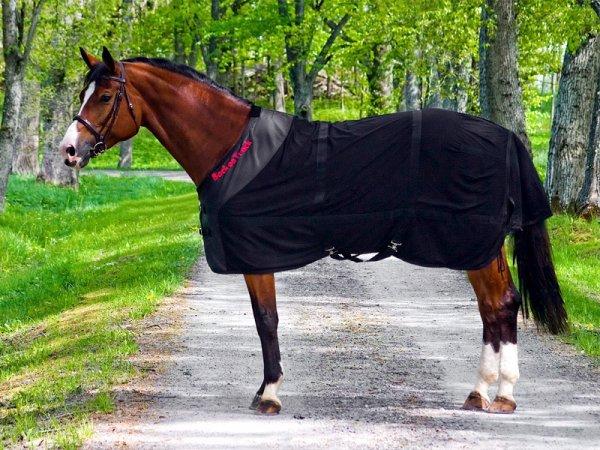 cheval bai