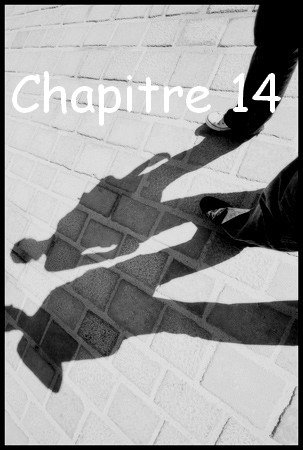 Chapitre 14